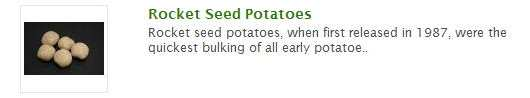 rocket seed potatoes