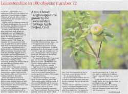 leicester mercury report on leicestershire heritage apples, scan of the page